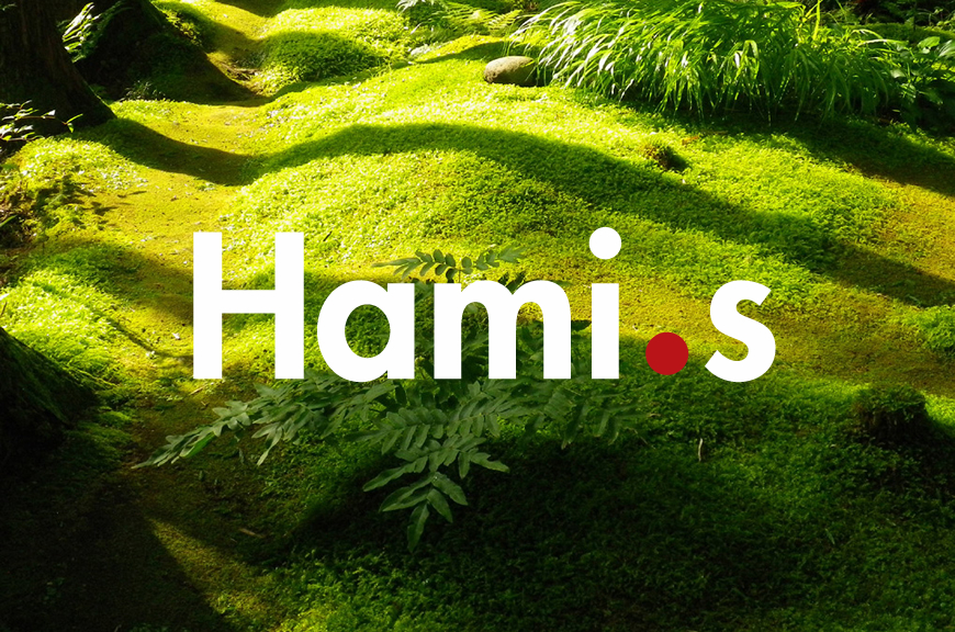 Hami.s Art and Design Studio